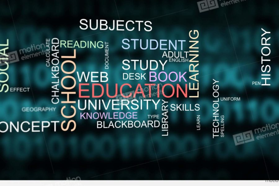 The Research Overseas Consultants in Delhi Are Offering Skilled Assist to The College students